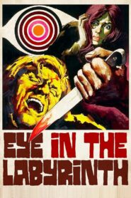 Eye in the Labyrinth